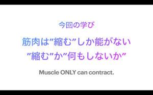 保護中: オンライン講座・Bodywork2.0専用site